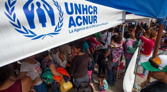 Acnur intercede por venezolanos para flexibilidad en requisitos migratorios
