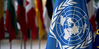 ONU aprobó comisión que investigue violaciones de DD.HH en Venezuela