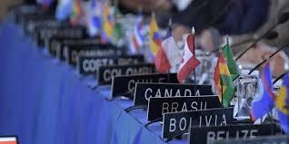 OEA aprobó activación del TIAR para Venezuela