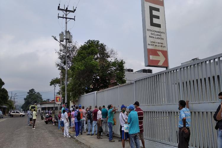 Rubio / Táchira