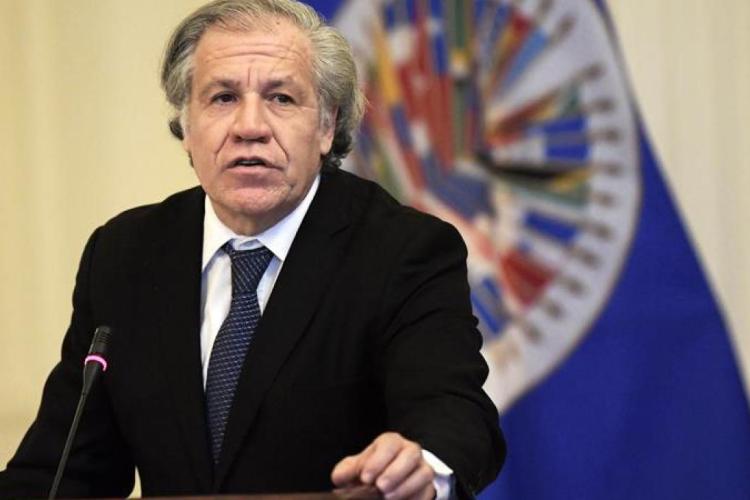 Secretario General OEA Luis Almagro / Foto Cortesía