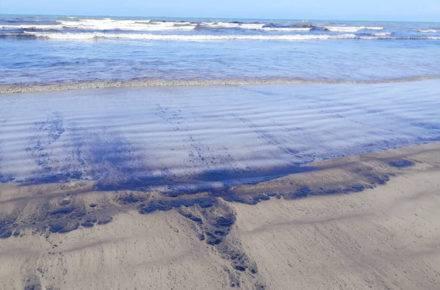 Una película de hidrocarburo se visualiza en las costas de Morrocoy como consecuencia del derrame petrolero.   Foto: cortesia