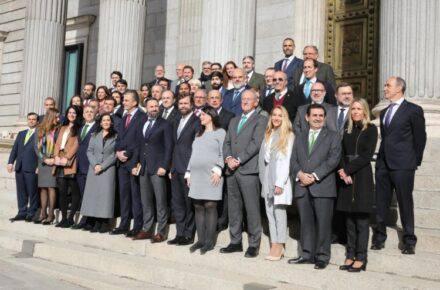 Grupo Parlamentario Vox