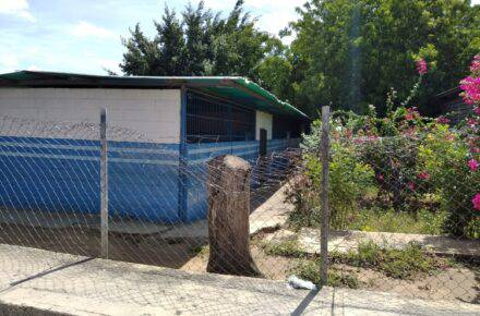 Centros educativos en Lara.