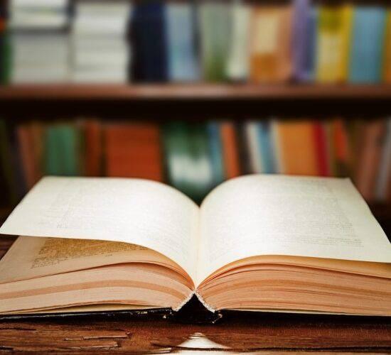 Libro. Foto cortesía