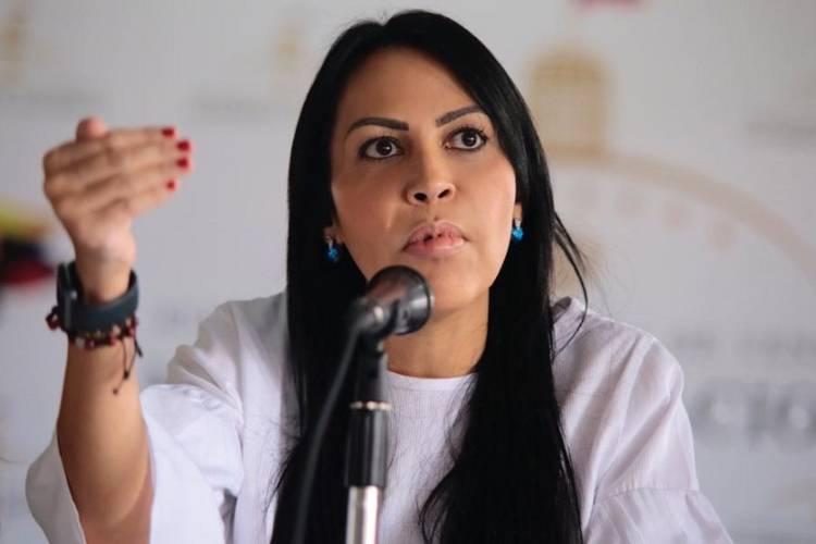 Delsa Solórzano, diputada de la AN. Foto: Cortesía