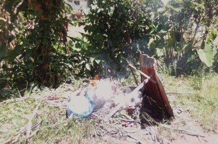 Basura en San Cristóbal