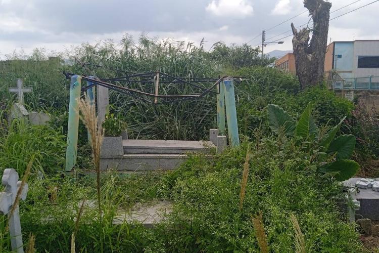 Cementerio de Güigüe, un lugar donde reina el abandono y la inseguridad