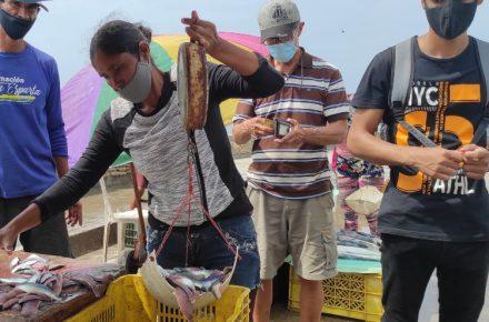 Vender sardinas es el sustento de un grupo de jóvenes en el Mercado de Los Cocos de Porlamar